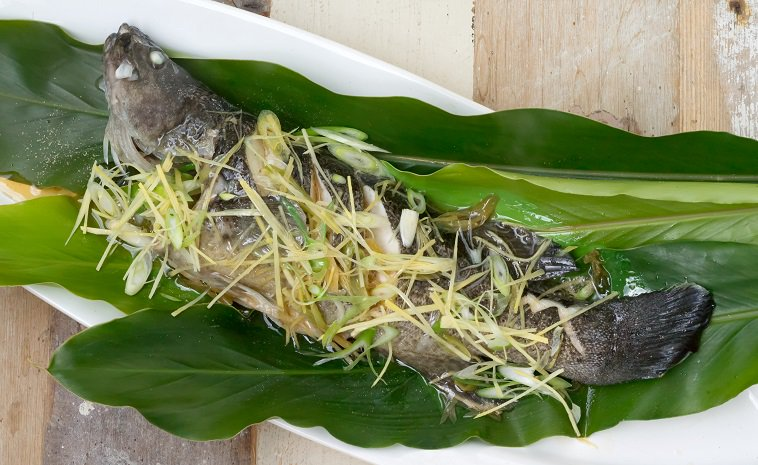 Steamed Chinese-style Whole Murray Cod